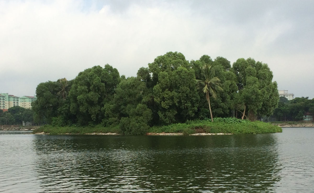 Phía trước Ecoplace là Đảo Cò, hồ Linh Đàm.